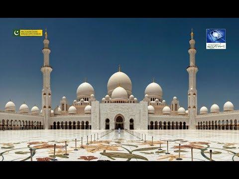 ОАЭ Мечеть шейха