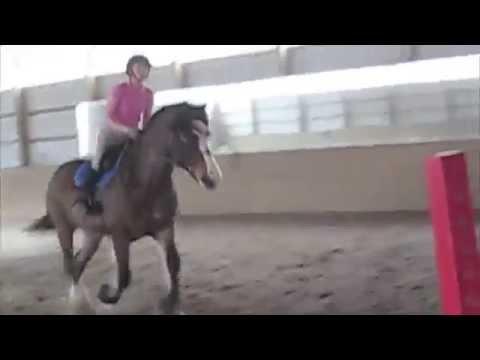 Amber Jumping