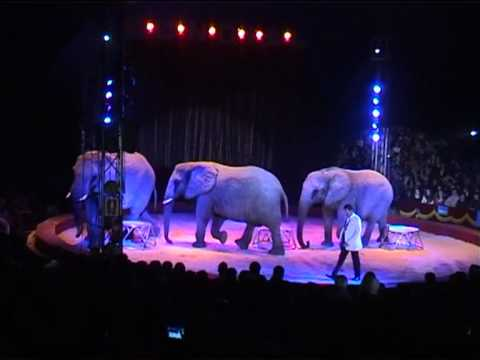 Billy Smart  working at circus Mundial with Arenas Elephants