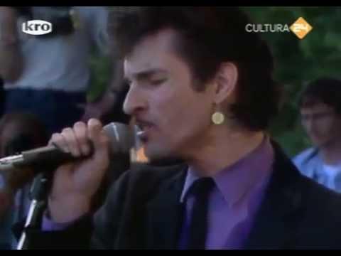 Mink DeVille - Pinkpop 1982