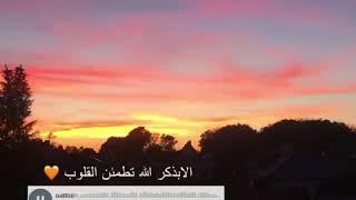 اسم القارئ : عبد الرحمن مسعد?✨.