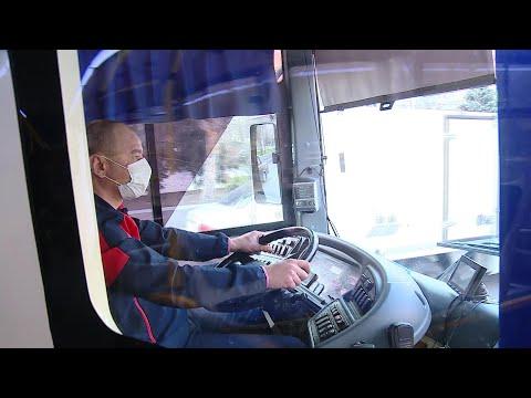 Общественный транспорт Волгоградской области приостановил работу