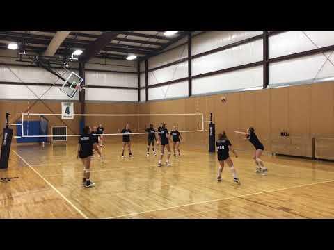mizuno volleyball new york ny new york