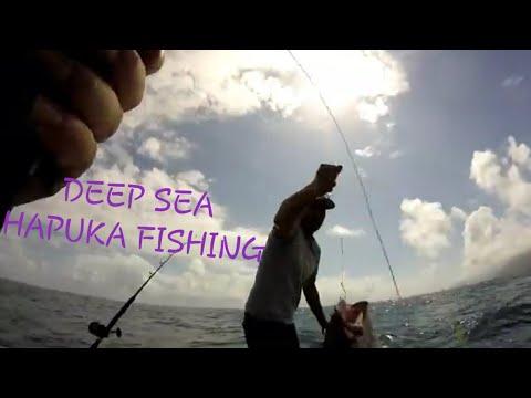 NZ Fishing Awesome Hapuka! Waihau Bay Slay Day Onlanders