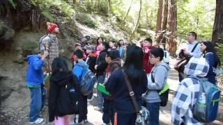 Alliance Redwoods Outdoor Education