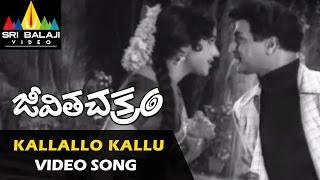 Jeevitha Chakram Songs | Kallallo Kallupetti Video Song | NTR, Vanisri | Sri Balaji Video