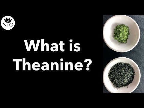 What is L-theanine?
