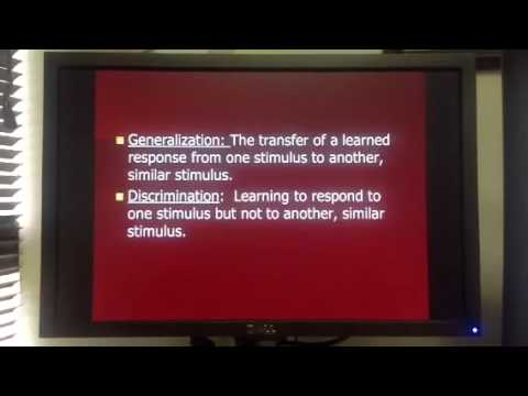 Generalization and Discrimination - YouTube