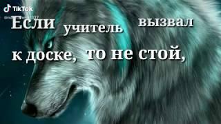 Цитаты волка 🐺☝🏼#5