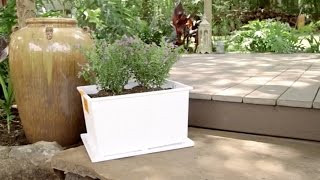 best way to transform storage containers into planters