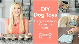 DIY Dog Toys Made From Common Household Items | Proud Dog Mom