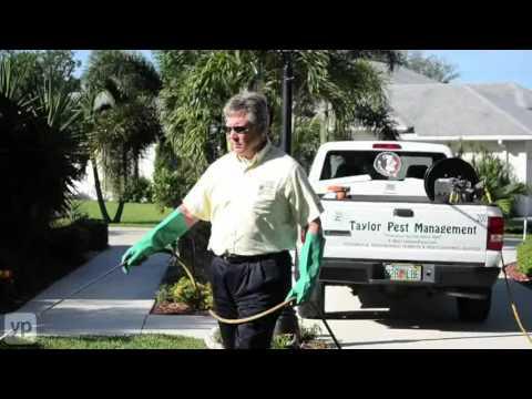 Taylor Pest Management Pest Control Services Port St. Lucie
