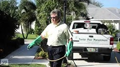 Taylor Pest Management Pest Control Services Port St. Lucie