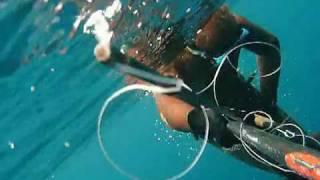 Pescasub: Calasole in Corsica... second part Spearfishing Pesca sub