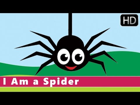 I Am A Spider | Fun Facts for Kids | Animation Nursery Rhyme for Kids