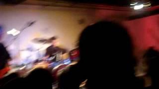 Miss Freelove 69 Hoodoo Gurus Live in Tokyo
