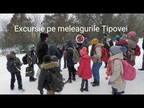 Țipova 12 februarie 2017  Biești