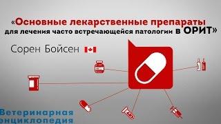 Основные лекарственные препараты для лечения часто встречающейся патологии в ОРИТ