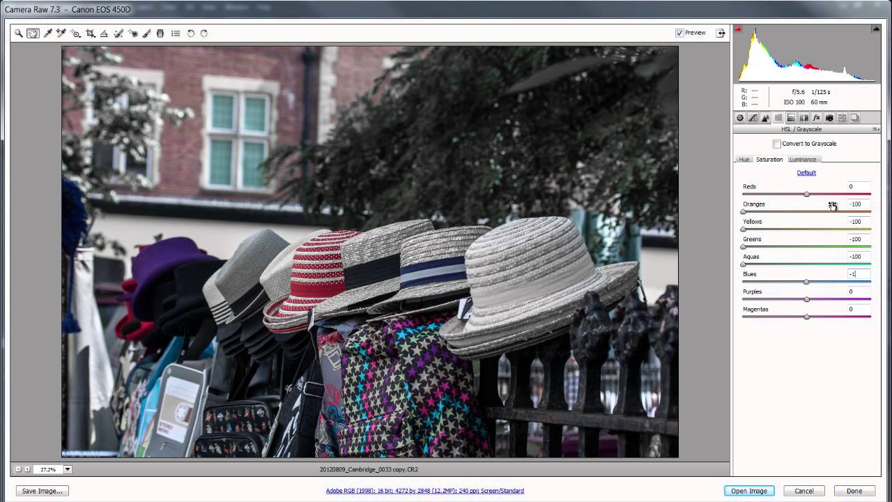 Easy Spot Colour with Adobe Camera Raw and Photoshop Lightroom