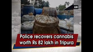Police recovers cannabis worth Rs 82 lakh in Tripura