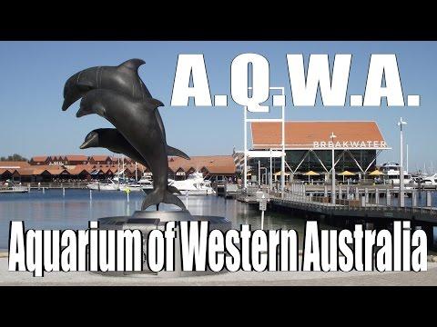 AQWA - The Aquarium Of Western Australia