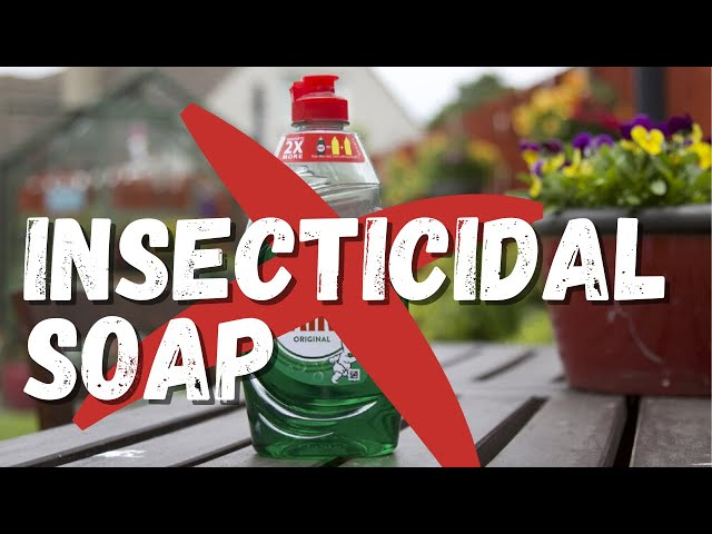 Insecticidal soap: clearing up the contradictory information