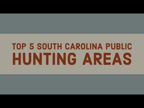 Top 5 South Carolina Public Hunting Areas
