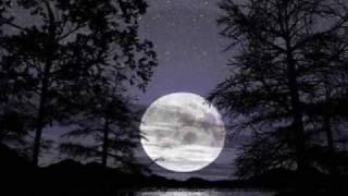 Un Gato en la Oscuridad - Roberto Carlos