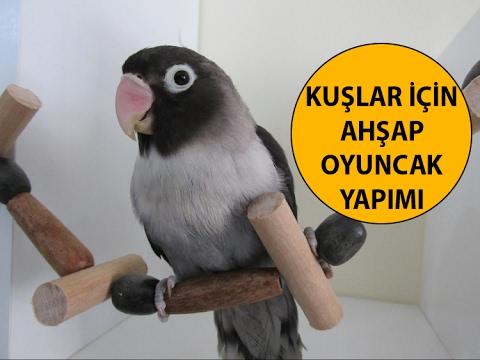 Kuşlar İçin Ahşap Oyuncak Yapımı