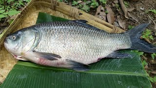 #Village Style Catla Fish Curry with Okra | Bocha Fish with Ladyfinger | Village Foods