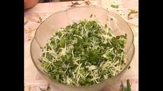 Рецепт салата со шпинатом. Тетянина садиба 2014