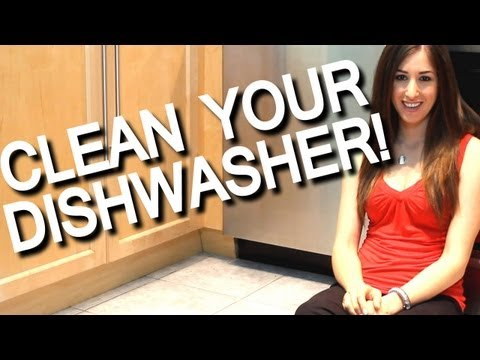 how-to-clean-your-smelly-dishwasher!-kitchen-appliance-cleaning-ideas-(fast-&-easy!)-clean-my-space