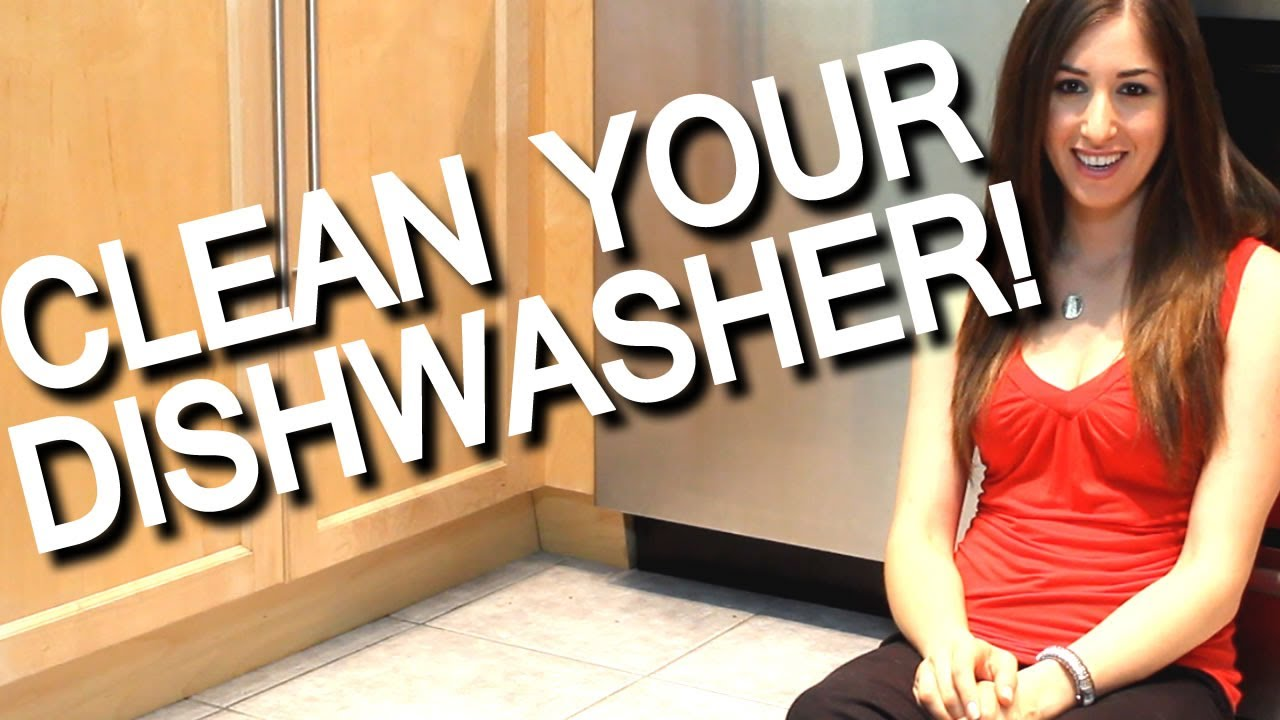 How Do I Clean My Dishwasher How To Clean Your Smelly Dishwasher Kitchen Appliance Cleaning