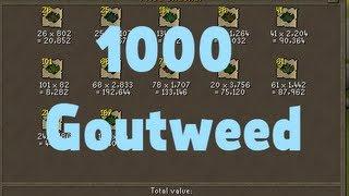 Exchanging 1000 Goutweed