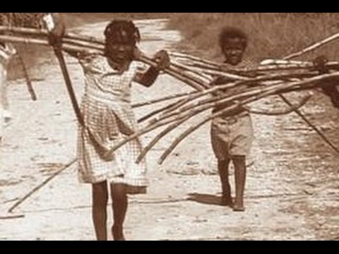 How Sugar Changed the World: Slavery, Freedom, and Science (2010)