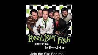 Beer (skacoustic)- Reel Big Fish