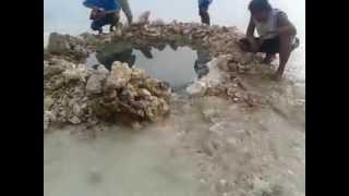 sinkhole after the 7 2 magnitude earth quake laya baclayon bohol philippines