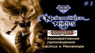neverwinter Nights 2: Storm of Zehir  Кооперативное прохождение  Стрим 06.07.19