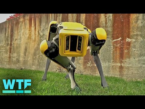 Boston Dynamics Spot robot is ready to leave the nest