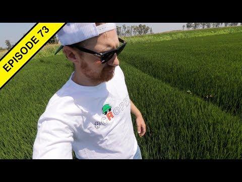 A Quick Tour Of Northern California Farmland!