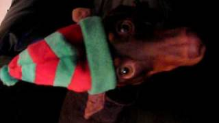 Video Cooper's Christmas Embarrasment download MP3, 3GP, MP4, WEBM, AVI, FLV November 2017