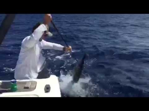 Customer Video: Gaffing a Wahoo with a Marsh Tacky Carbon Gaff
