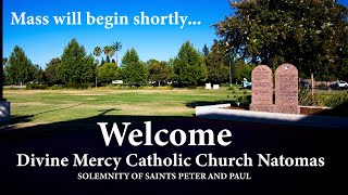 Divine Mercy Natomas- Solemnity of Saints Peter and Paul 6.29.2020