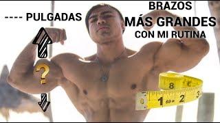 RUTINA DE BRAZOS MAS GRANDES I AUMENTA PULGADAS I ISMAEL MARTINEZ