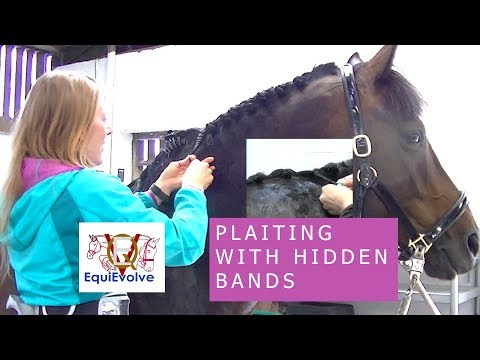 How To Plait A Horses Mane With Concealed Bands