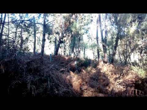 Terreno de Pinhal, Vila Fonche, Arcos de Valdevez