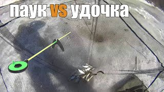 Рыбалка на паук рыбалка на зимний паук как рыбачить на зимний паук зимний паук vs удочка