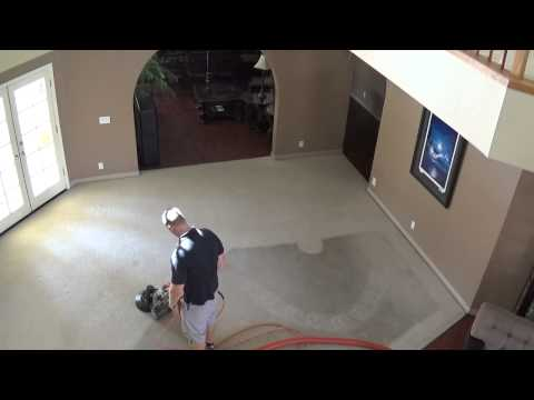 Affordable & Professional Organic Carpet Cleaning | Green & Eco Friendly