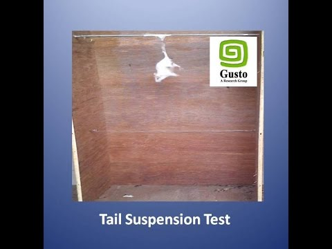 Tail Suspension Test (Evaluation Of Antidepressant Effect)