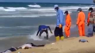 The body of migrants in Libya